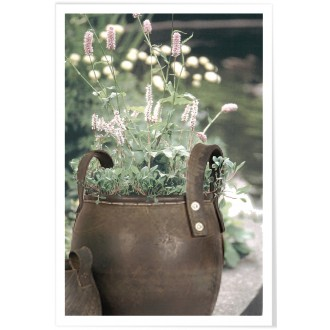 Recycled Rubber Jug for Planting